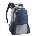 Diversion Carry Backpack