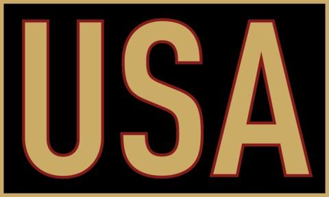 Gold & Black USA Sticker